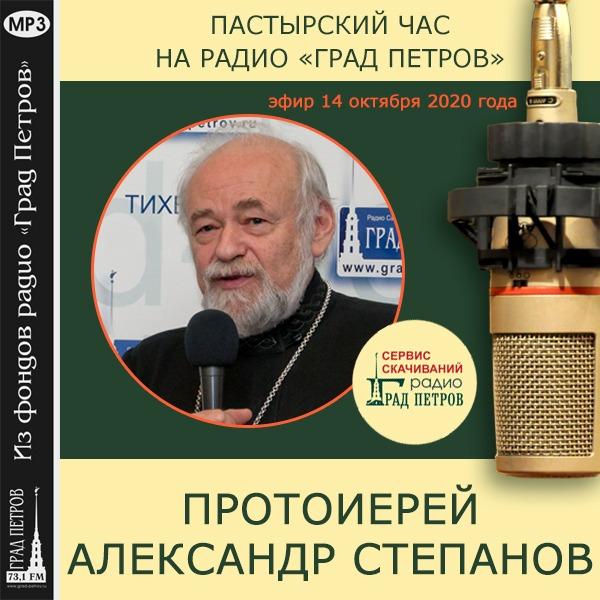 ПАСТЫРСКИЙ ЧАС. 14 ОКТЯБРЯ 2020 ГОДА. Протоиерей Александр Степанов